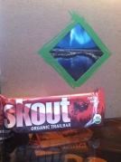 Skout | Gluten-Free, Organic Trailbar Apple and Cinnamon